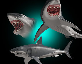 animated Megalodon - 3d animated Great White Shark 1
