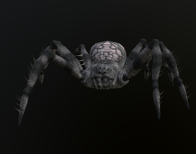 Spider by BD 3D model