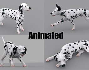 3D model animated dog dalmatain spotty dog