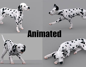 dog dalmatain spotty dog 3D model