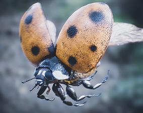 Ladybug Rigged PBR 3D model low-poly