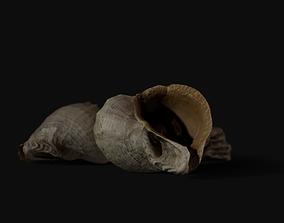 Seashell 8K Photogrammetry - Game Ready 3D model