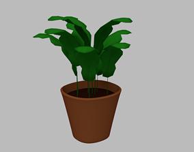 3D model Plant in Plant Pot