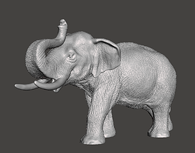 Elephant model 3D