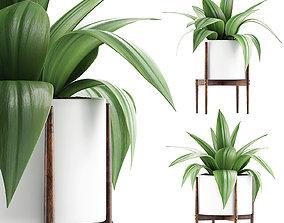 3D model pots Plants Collection 63
