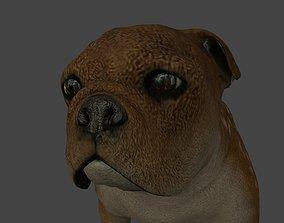 FEBU-002 Dog walk in place 3D