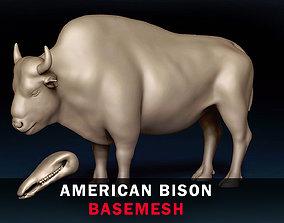 americanbison American Bison Basemesh 3D