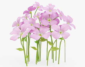 3D asset Violet Flowers