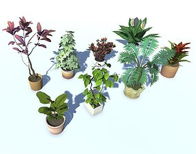 Indoor Plant Pack 2 Lowpoly VR AR Game ready 3D model