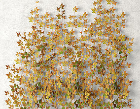 Vine leaves wall 3D model