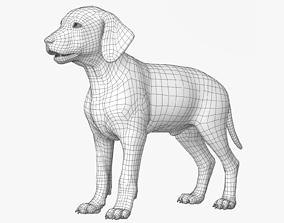 Dalmatian Puppy Lowpoly 3D model