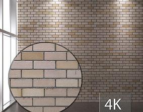 Brickwork 115 3D asset