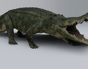 Crocodile 3D model animated low-poly