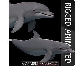 3D model BottleNose Dolphin Tursiops Truncatus