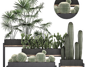 3D Decorative plants in flower pots for the interior 462