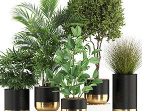 Plants collection 540 3D