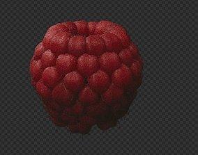 3D asset game-ready Raspberry