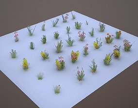 33 Plant Collection Game Ready Low Poly 3D model