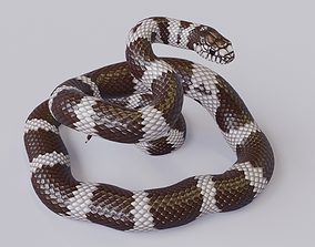 3D asset Rigged California King Snake Rigged