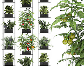 3D Vertical garden for the kitchen 69