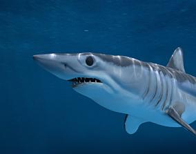 3D Shortfin Mako Shark