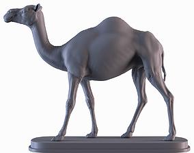 Camel sahara 3D print model