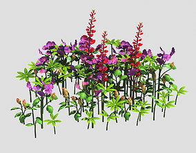 Small Plant - Mountain Flower 36 3D