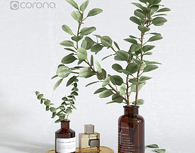 Decorative set with eucalyptus in a vase 3D