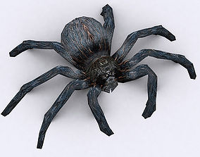 3DRT - Spider animated