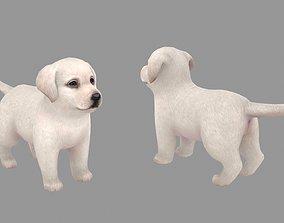 3D model Cartoon pet puppy - Labrador - baby dog