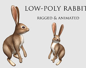 3D asset animated hare rabbit bunny animation