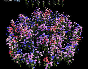 carnation 3D plant