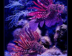 3D fish Pterois volitans