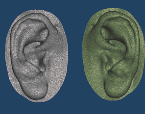 Natural human ear anatomy 01 3D printable model