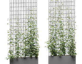 3D Ivy model on the grate in the tub - 2 models