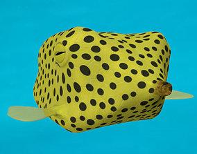 3D model Boxfish yellow low poly