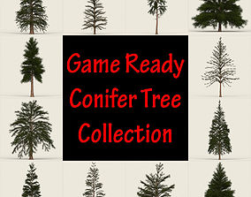 3D asset Conifer Tree Collection