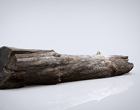 3D model DEAD TREE TRUNK