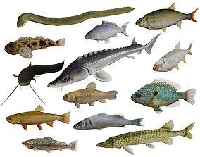3D model Freshwater fish pack