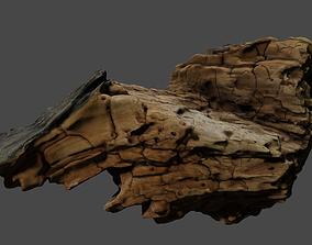 Photo-realistic bark 3D model
