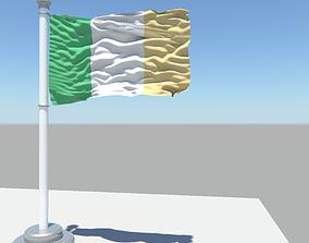 3D model Ireland flag