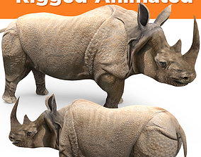 3d Rhino rigged with Animated Rhinoceros animated 1