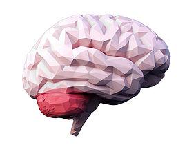 Low Poly Brain 3D model