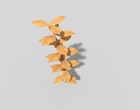 plant Low poly Plant 3D model realtime