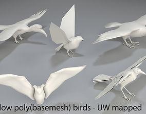3D asset low-poly Birds - 5 pieces-low poly-part 3