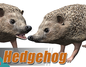 3D model animated Hedgehog