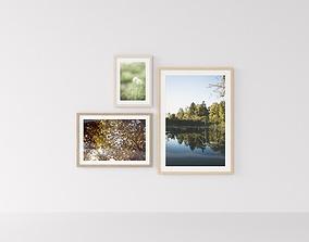 Picture Frames Nature I 3D