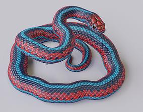 Rigged San Francisco Garter Snake 3D asset