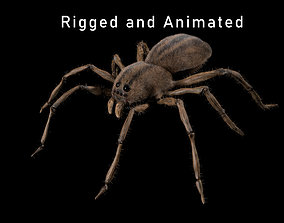 3D animated Spider