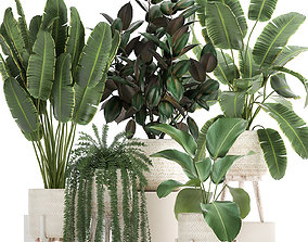 3D model Houseplants in a white rattan basket for the 1